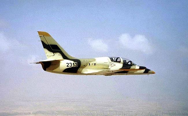 L-39 N2313