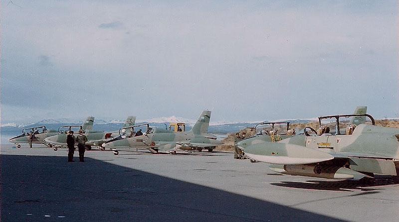 Уцелевшие Aermacchi MB-339A со своими предшественниками MB-326