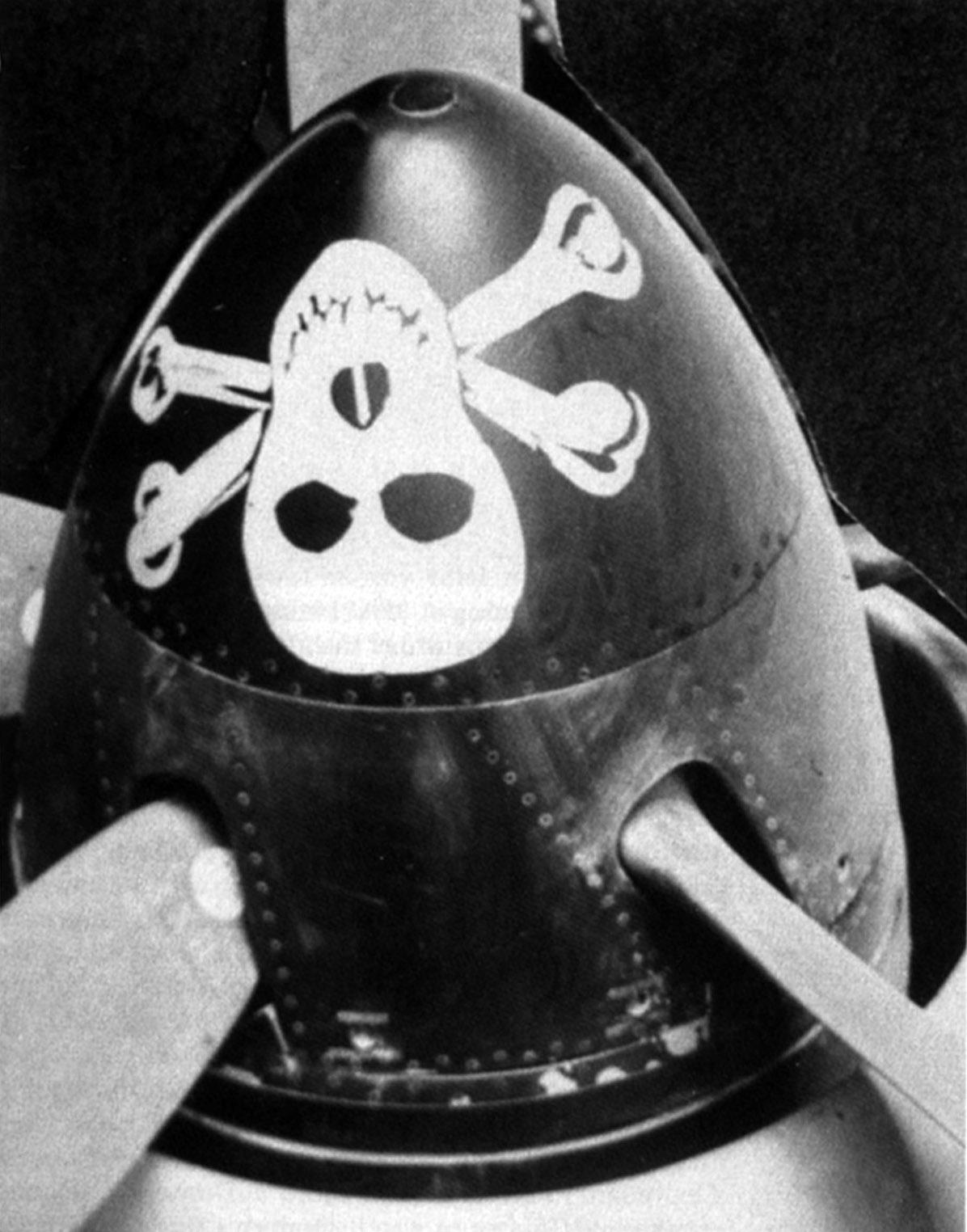 Кок винта Hawker Fury с нанесенным черепом