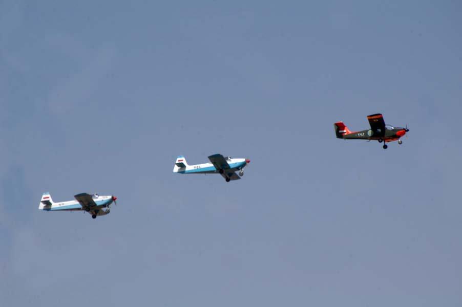 Два Flamingo и один учебный MF-17 Mushshak в 2009 году